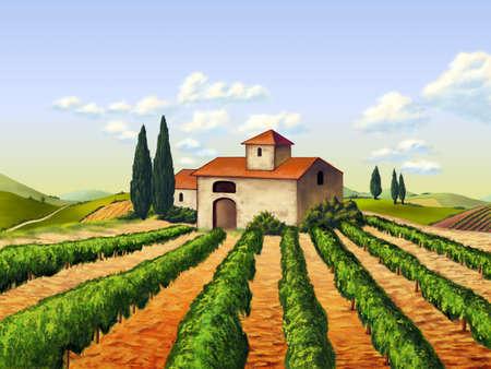 chianti: Vineyard in Tuscany, Italy. Original digital illustration.
