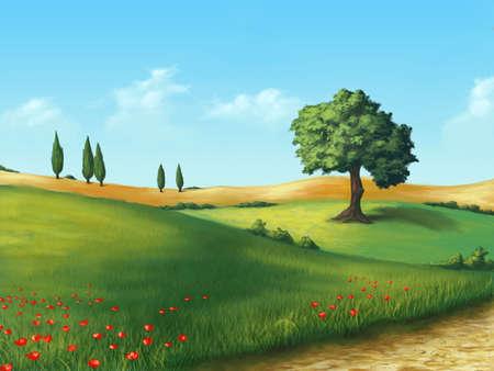 Farmland in Tuscany, Italy. Original digital illustration. Stock Illustration - 4601077