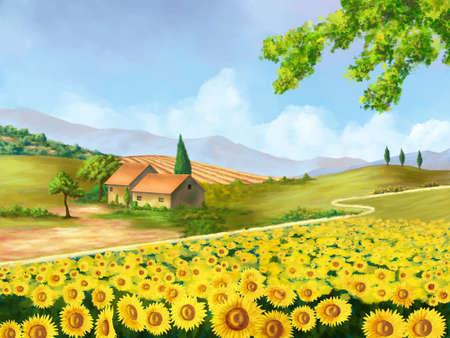 Sunflowers field in Tuscany, Italy. Original digital illustration. illustration