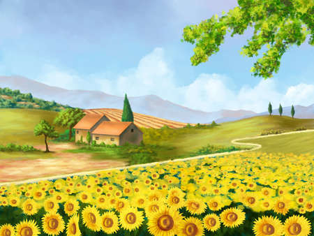 diagonals: Sunflowers field in Tuscany, Italy. Original digital illustration.