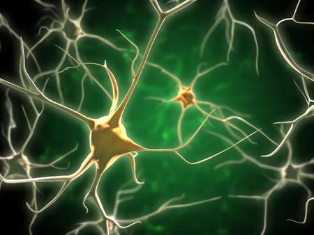 Neurons network in human brain. Digital illustration. Banco de Imagens