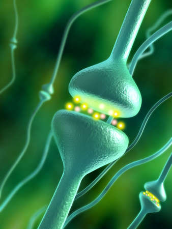 Activated chemical synapses in human brain. Digital illustration.