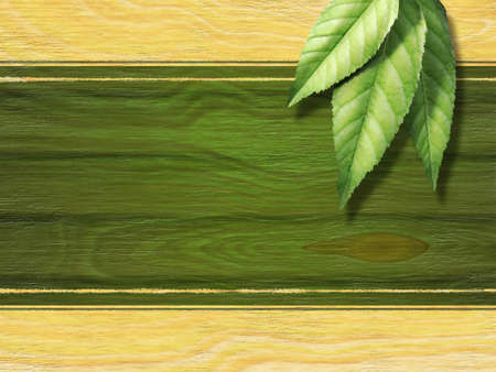 organic background: Some fresh tea leaves over a wooden background. Suitable for tea labels. Digital illustration.