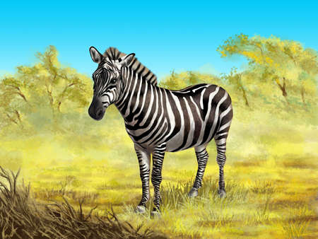 Wildlife: zebra in its native african environment. Digital illustration. Stock Illustration - 6894050