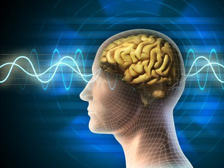 Menselijk hoofd en de hersenen. Verschillende soorten golfvormen geproduceerd door hersenactiviteit getoond op de achtergrond. Digitale illustratie.