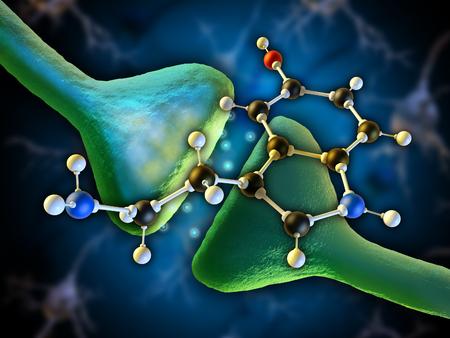 Molécula de serotonina como neurotransmisor en el cerebro humano. Ilustración digital.