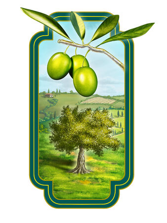 Olive oil label with a beautiful country landscape. Digital illustration, clipping path included. Banco de Imagens