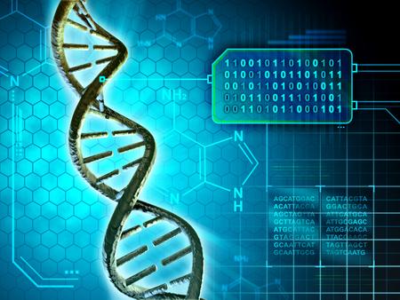 Estructura de la DNA convierte en código binario. Ilustración digital.