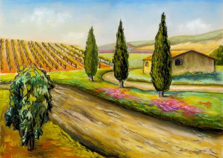 Prachtige wijngaarden landschap in Toscane, Midden-Italië. Originele illustratie. Stockfoto