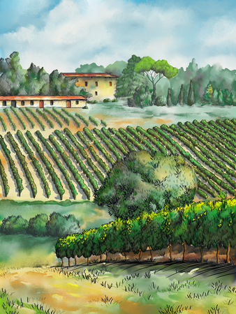 Beautiful vineyards landscape. Digital watercolor. Banco de Imagens