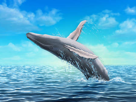 Humpback whale jumping out of water. Digital illustration. Stock Photo