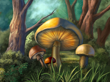 Some colorful mushrooms in a small wood clearing. Digital illustration. Stock Photo
