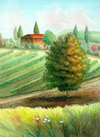 Watercolor landscape depicting a country landscape with a vineyard and a tree in the foreground.