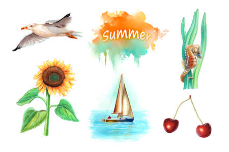 Collection of five summer themed watercolor illustrations, including a seagull, sunflower, seahorse, sail boat and some cherries. Traditional watercolor on paper.