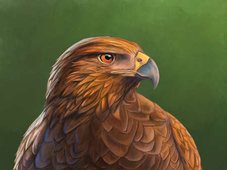 Harris hawk portrait with dramatic lighting. Digital painting.