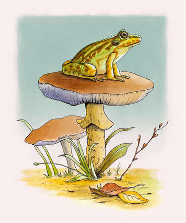 Cute frog resting on top of a mushroom. Ink and watercolor illustration.