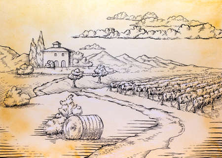 Rural landscape in watercolor and black ink. Traditional illustration on paper.