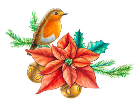 Watercolor Christmas composition with an european robin. Traditional watercolor illustration.