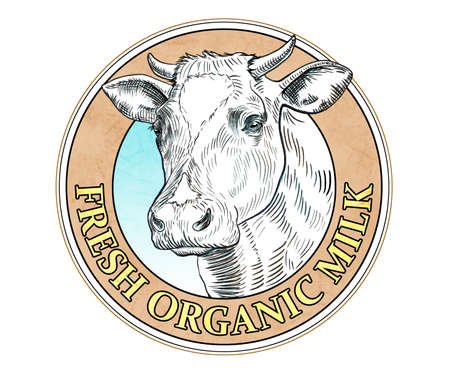 Milk label with a cow head drawn with black ink. Digital illustration. Stock Photo