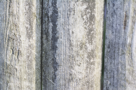 A plank wood texture background.
