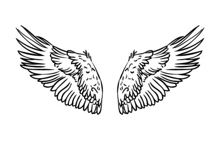 Pair of spread out eagle bird or angel wings