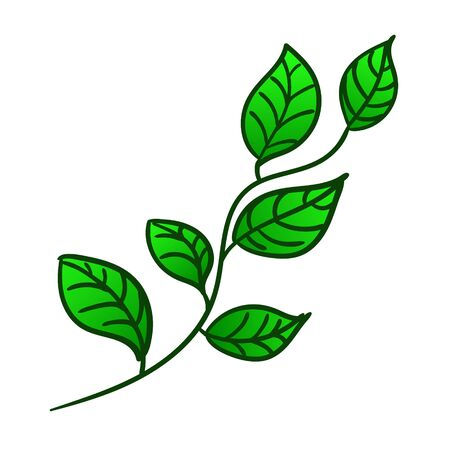 Spring branch with fresh green leaves. Vector illustration Ilustrace