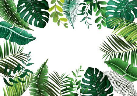 Plantes botaniques tropicales de vecteur avec des feuilles de noix de coco et de bananier - illustration vectorielle Vecteurs