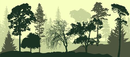 2d Vector illustration. Trees in the fog. Deep forest haze. Hills covered by plants and foliage. Trees and ate. Majestic view. Deep forest.