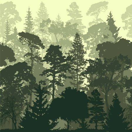 Dense pine and spruce forest vector backgrounds. Panorama taiga silhouette illustration Vettoriali