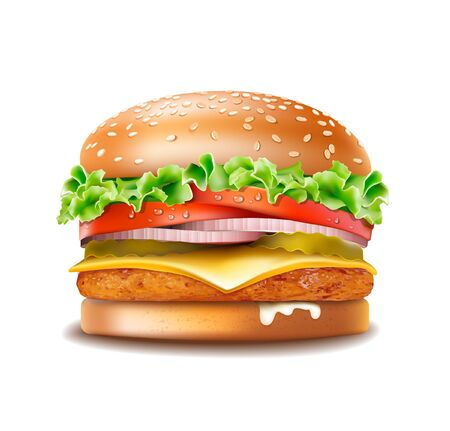 Vector Chicken burger isolated on white background