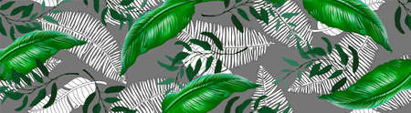 Vector horizontal banner with green, natural leaves on a sky background. Best as a web banner 向量圖像