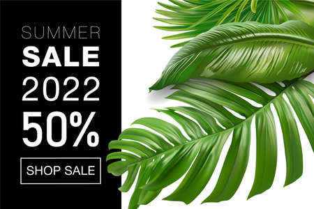 Sale banner, poster with palm leaves, jungle leaf and handwriting. Floral tropical summer background. Vector illustration