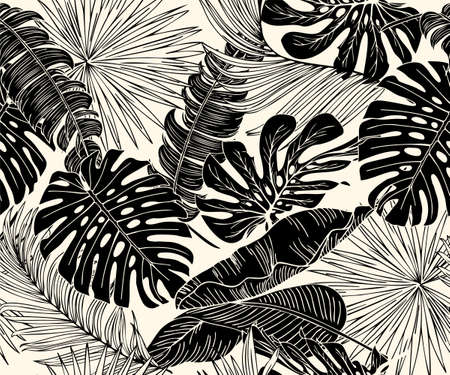 Black and white Monstera, palm, banana any tropical leaf pattern. Vector