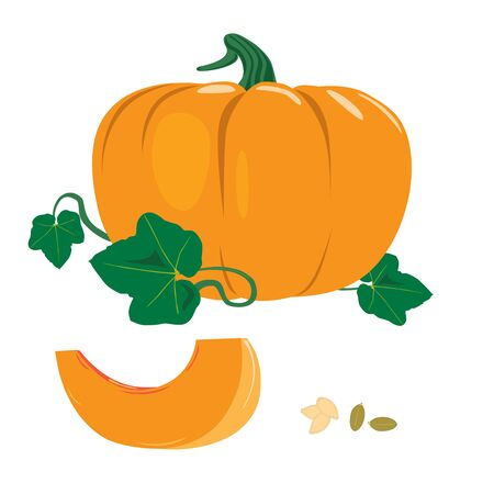 orange ripe pumpkin with three leaves and peeled clove and pumpkin seeds