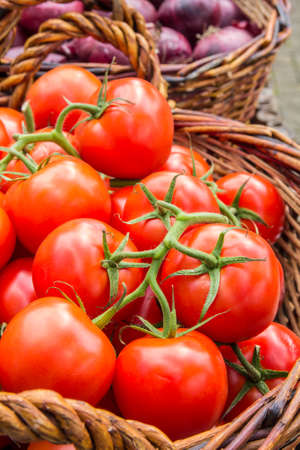 a basket of ripe juicy tomatoes