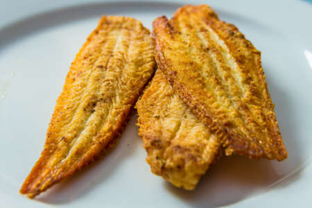 closeup of fried dover sole fish on white plate Standard-Bild
