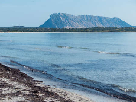 La Cinta beach, Sardinia, Italy sunny white beach with view of island
