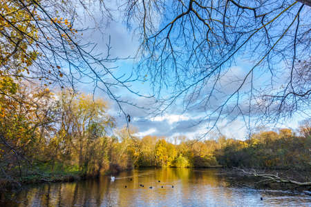 sunny crisp autumn day with blue sky and clouds overlooking stunning pond surrounded by colourful fall leaves on trees Standard-Bild