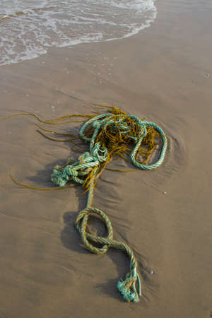 Plastic rope pollution littering the beach Фото со стока - 107133915