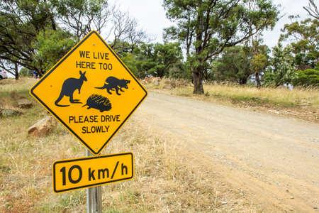 Hobart, Tasmania - December 27 2016: road side warning sign for Tasmanian kangaroo, tasmanian devil and echidna wildlife