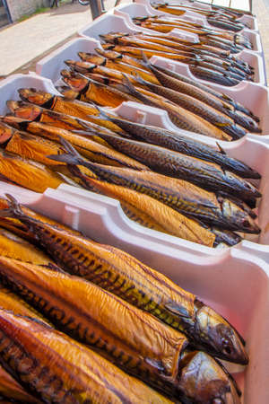 prepared and smoked mackerelc loseup at European local fish market Imagens - 121767252