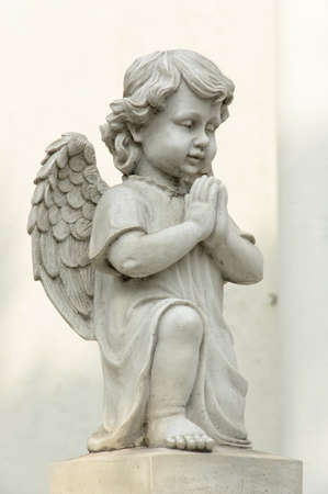 cherub: Cute winged Angel statue in praying pose with side view