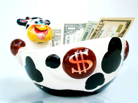 Low angle view of Ceramic Cow bowl with cash. photo
