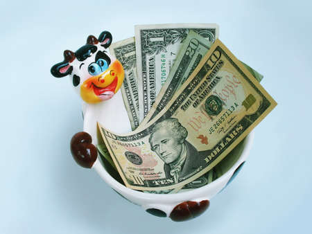 A ceramic cow bowl holding USA dollars.           photo