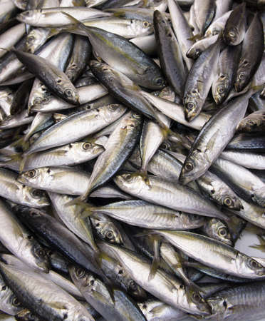 Yellow Fin Fishes in the market Stock Photo