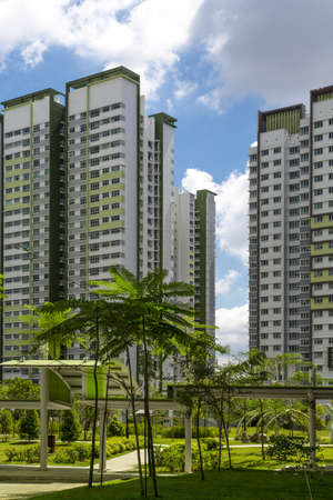 A park leading to a green estate in Singapore  Stock Photo - 20879016
