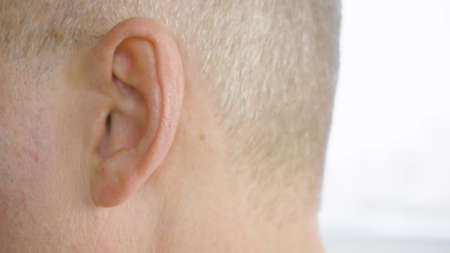 Adult man with gray temples moving ear close up. Male ear macro shooting, side view. Otolaryngology and hearing health. Parts of human face and body. Health care concept