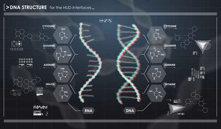ameoba: HUD infographic elements with DNA structure. Futuristic user interface. Abstract virtual graphic.