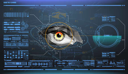 eye in process of scanning. Biometric scan with futuristic HUD interface. Control and security in the accesses. Surveillance system, immersive technology