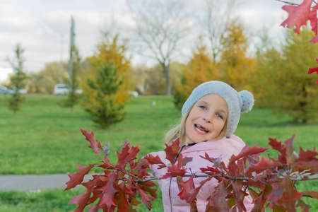 Autumn photo of laughing little girl with red japanese maple branch Standard-Bild - 111783445